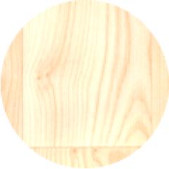 檜/ひのきの写真